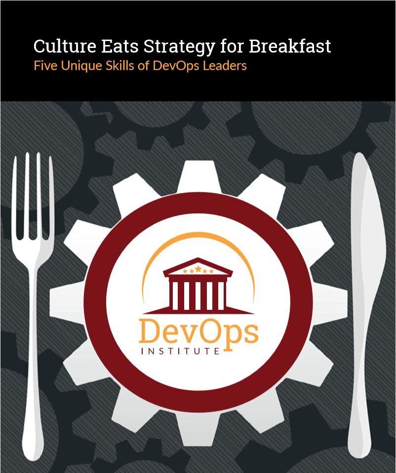 Five Unique Skills of DevOps Leaders
